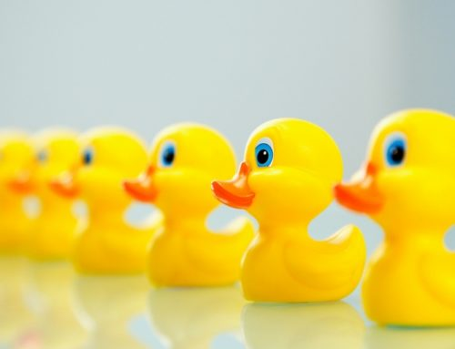 "What Are Your Financial ""Ducks"" and Why Should They Be in a Row?"